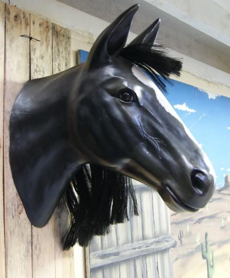T te de cheval d cors western - Image tete de cheval ...